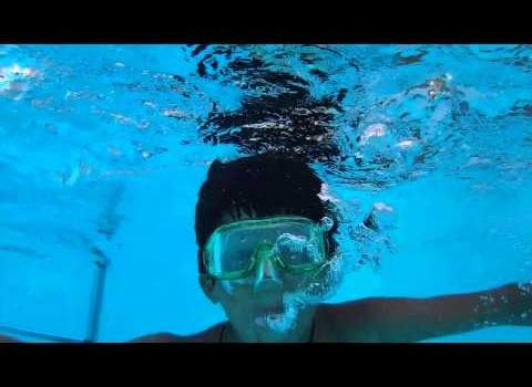 Hotel a Rimini con piscina: una giornata tipica all'Acquario!